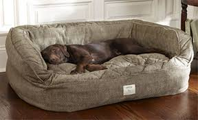Great Dane Home Decor Dog Beds For Great Danes Ideas Best Design For Dog Beds For