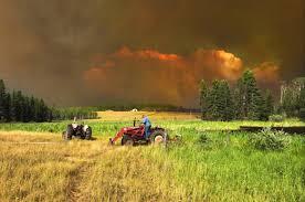 Bc Wildfire Drone by July Wildfires Have Been U0027almost Unprecedented U0027 Skrepnek