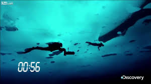 world record free dive under ice 250 feet 76 2 meter in speedos