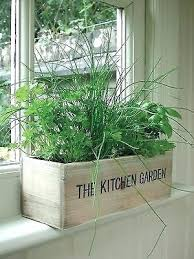 windowsill planter garden plants deck herb garden ideas kitchen