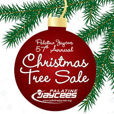 christmas tree sale annual christmas tree sale palatine jaycees palatine jaycees