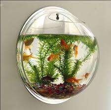 wall type mini aquarium fish bowl mini aquarium aquarium fish