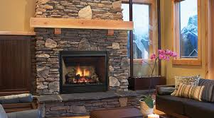 Propane Fireplace Heaters by Wood And Gas Fireplaces