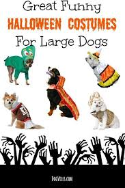 Dog Halloween Costumes Funny Halloween Costumes Large Dogs Funny Halloween