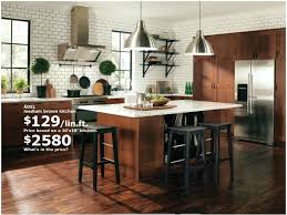 Ikea Kitchens Design by 154 Best Kitchen Remodels Mostly Ikea Images On Pinterest