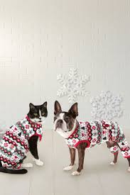 18 best dog and cat gifts pet gift ideas for christmas 2017