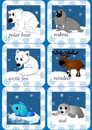 arctic ocean animals for kids