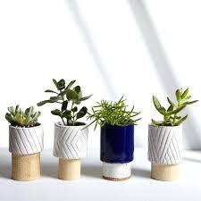 beautiful large indoor planter gallery interior design ideas