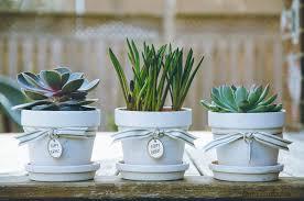 personalized flower pot personalized flower pots pagina
