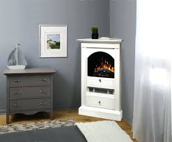 Napoleon Electric Fireplace Electric Fireplaces Costco U2013 Thesrch Info
