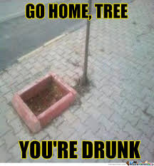 Drinking Problem Meme - you have a drinking problem tree by unknownjedi meme center