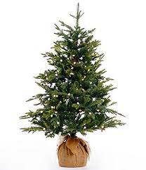 4ft christmas tree christmas trees dillards