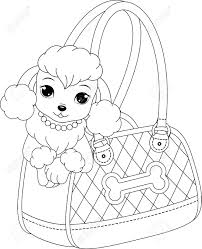 royalty free coloring pages poodle coloring page royalty free cliparts vectors and stock