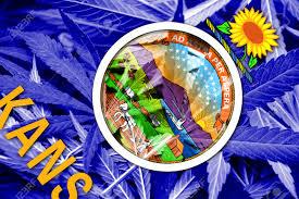 Colorado Flag Marijuana Kansas Senator David Haley Will Try To Pass Medicinal And