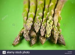 cuisiner asperges vertes fraiches manger votre verts pointes d asperges vertes fraîches bio et les