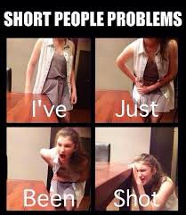Short People Meme - 30 memes that only short people will understand
