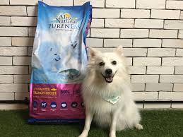 american eskimo dog food dоg food review alрѕ nаturаl cold water salmon singapore perropet