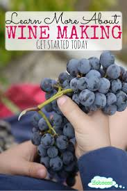 best 25 make your own wine ideas on pinterest homemade wine