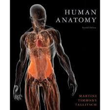 Human Anatomy And Physiology Books Human Anatomy Hardcover Textbook Interactive Physiology Hole U0027s