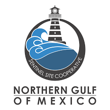gulf oil logo northern gulf of mexico sentinel site cooperative