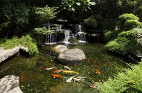 create a relaxing zen space in your backyard