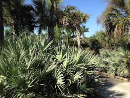 Botanical Garden Naples by Naples Botanical Gardens Naples Real Estate