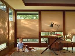 Chicago Blinds And Shades Honeycomb Shades Roman Shades Chicago Oak Park Il