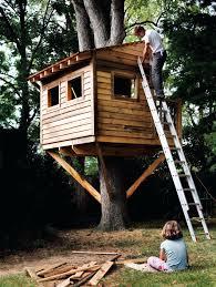 Treehouse Examples Wooden Wonderland Massive Lofted Design Giant Tree House Design