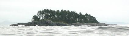 pine tree and islands from a kayak friends of ecological