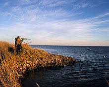 How To Make A Duck Blind Waterfowl Hunting Wikipedia