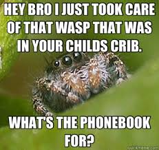 Spider Bro Meme - hey bro i just took care of that wasp that was in your childs crib