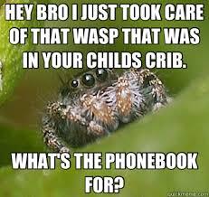 Spider Bro Meme - misunderstood spider memes quickmeme