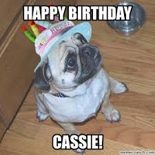 Happy Birthday Pug Meme - image jpg