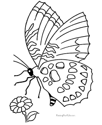printable butterfly coloring picture