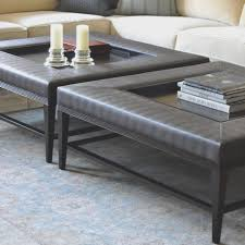 Decorating Coffee Table Coffee Table Captivating Coffee Table Tray Picture Design Trays