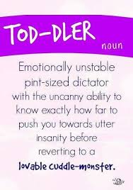 Definition Of Meme - toddler definition someecards cutequotes funnypictures