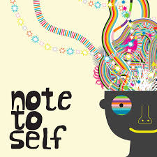 Privacy by Privacy Paradox The Note To Self Podcast Presents A 5 Day Plan