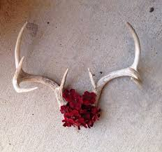 Christmas Decorations With Deer Antlers by Best 20 Deer Antler Decorations Ideas On Pinterest U2014no Signup