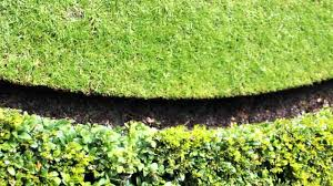 traditional lawn edging youtube