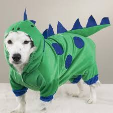 Extra Large Dog Halloween Costumes Couple Halloween Costumes 2013 Halloween U0027s Costumes