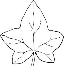 7 best images of leaf template coloring pages ivy leaf clip art