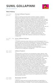 Sample Resume Of Software Developer by Principal Software Engineer Resume Samples Visualcv Resume