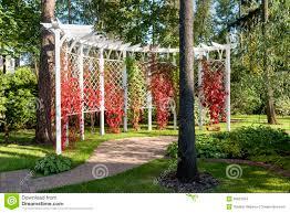 photos de pergola de tuin van de pergola stock afbeeldingen afbeelding 26631294