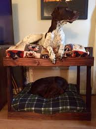 diy dog bunk beds 8 steps with pictures