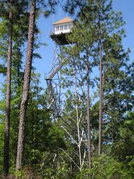 Alabama forest images File open pond fire tower conecuh national forest alabama jpg jpg