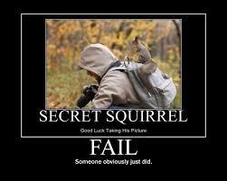 Pet Rock Meme - squirrel fail