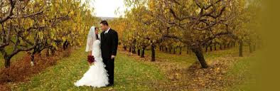 Wedding Venues In Connecticut Wedding Venues In Ct Lyman Orchards