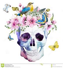 watercolor skull with flowers stock vector illustration of random