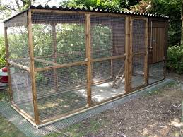 backyard chicken coop plans large how to start a backyard