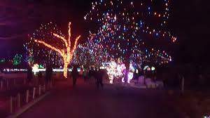 the entire zoo is a winter wonderland around christmas picture